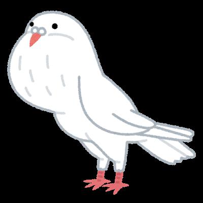 bird_pouter_hato-1.png