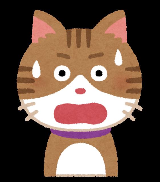 cat2_2_surprise.png
