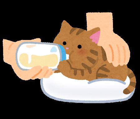 pet_honyubin_cat_utsubuse.png