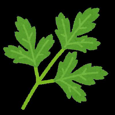 vegetable_italian_parsley.png